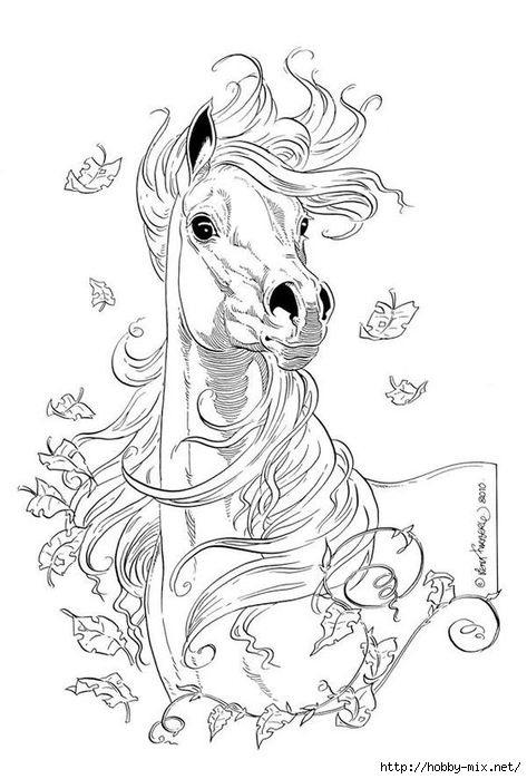 Рисунки лошадей для раскраски 010