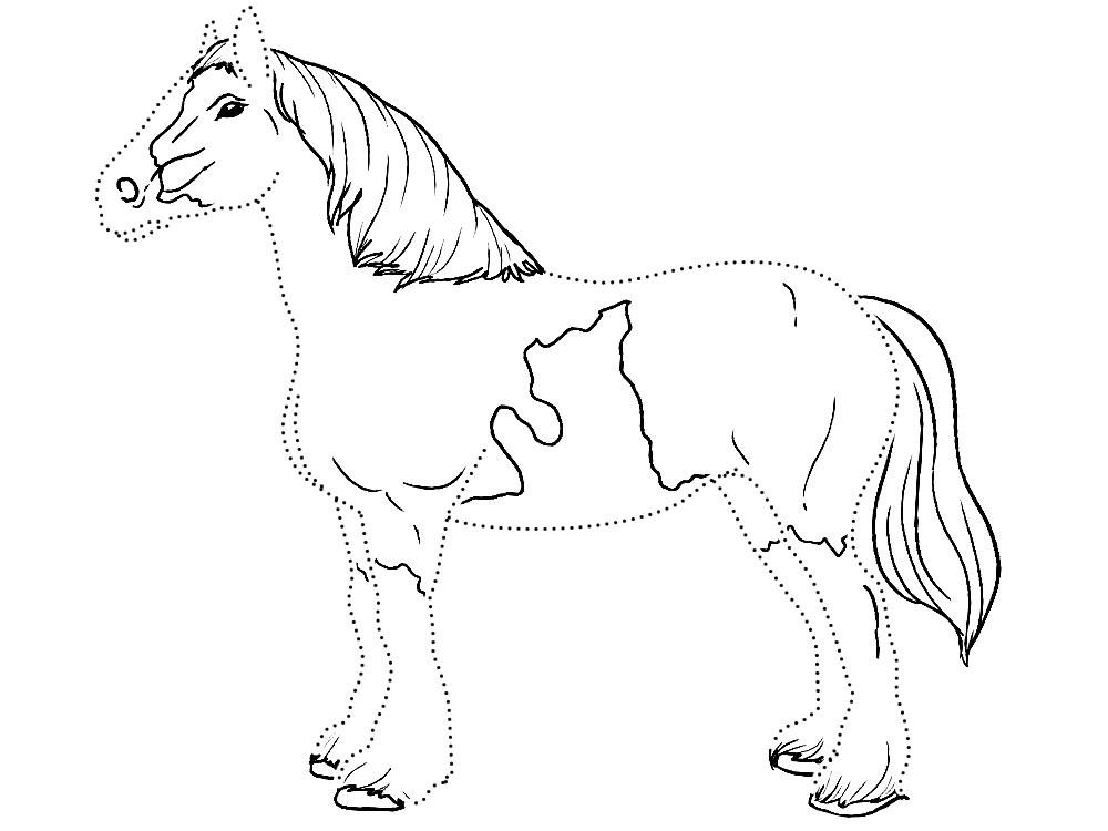 Рисунки лошадей для раскраски 012