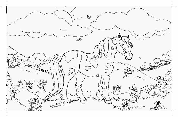 Рисунки лошадей для раскраски 015
