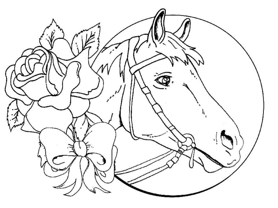 Рисунки лошадей для раскраски 020