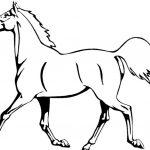 Рисунки лошадей для раскраски