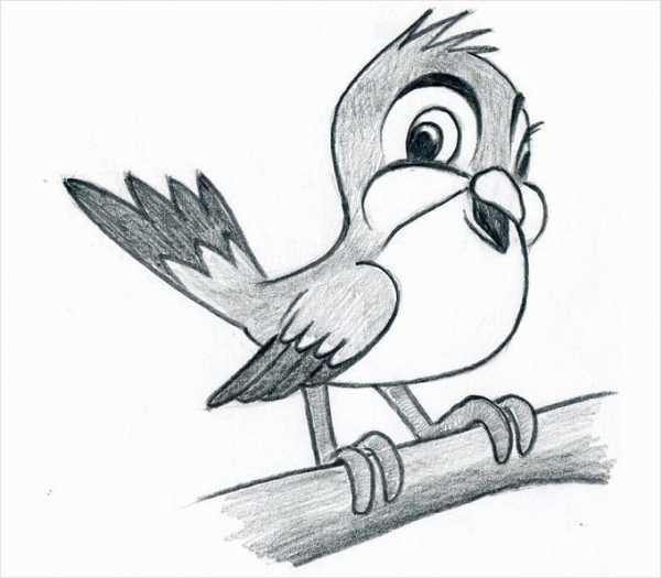 легкие рисунки карандашом для детей 8 лет 017