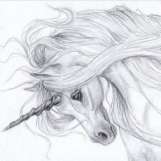 легкие рисунки карандашом для детей 8 лет 023
