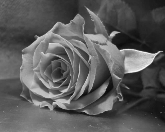 фото черно белое с цветными элементами девушки 011