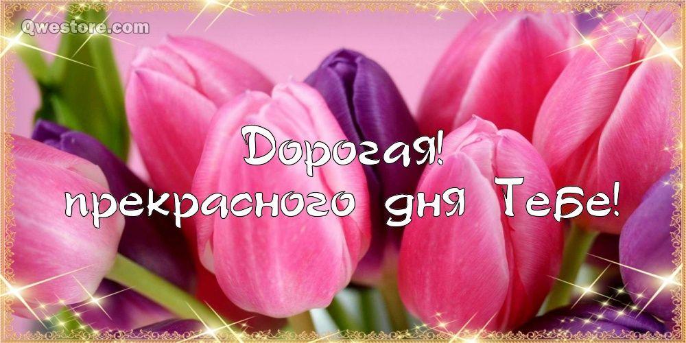 Картинки прекрасного дня и замечательного настроения 012