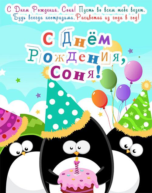 Красивые открытки с днем рождения Сонечка 020