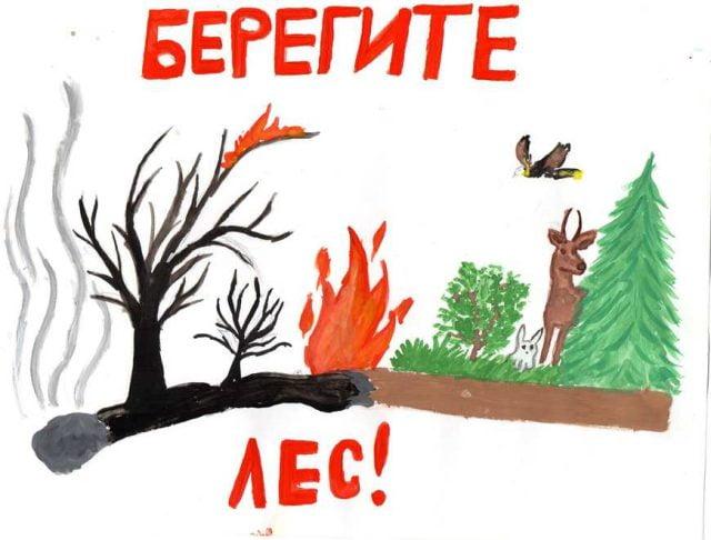 Поучительные картинки берегите лес от пожара 016