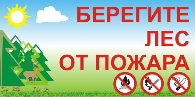 Поучительные картинки берегите лес от пожара 018