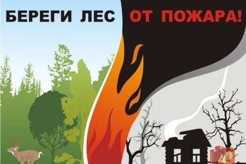 Поучительные картинки берегите лес от пожара 021
