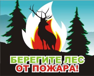 Поучительные картинки берегите лес от пожара 022
