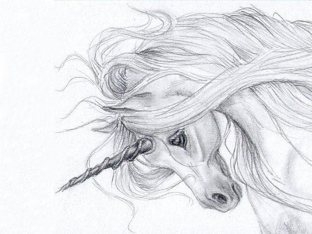Рисунки карандашом для срисовки легко и красиво 019
