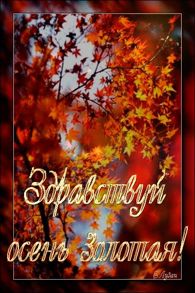 Здравствуй, осень Красивые картинки 01