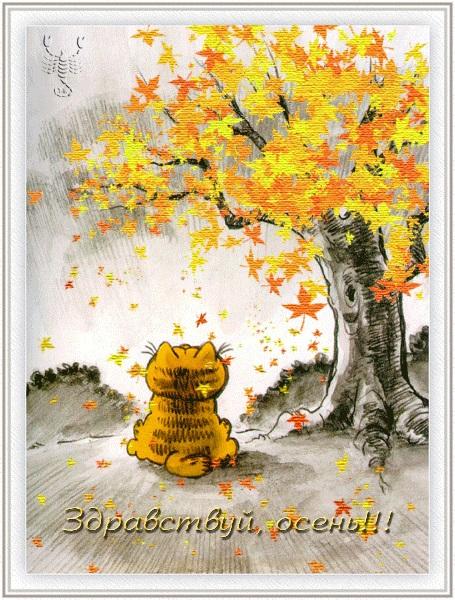 Здравствуй, осень Красивые картинки 25
