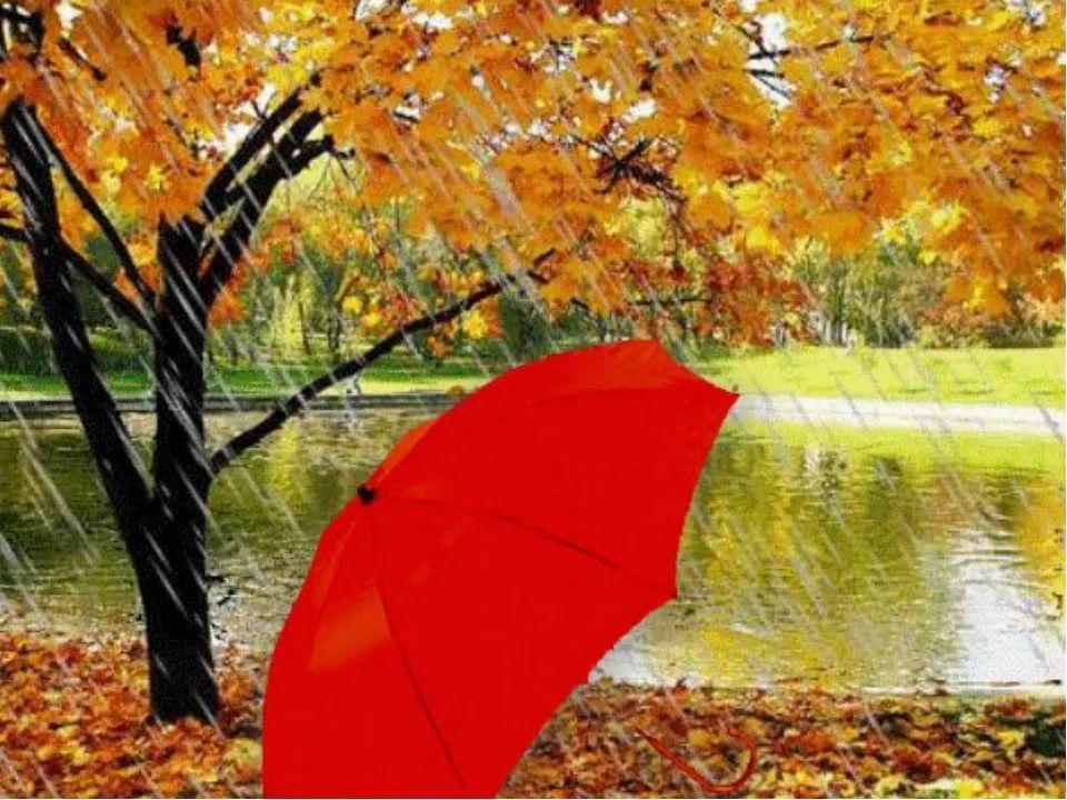 Красивая фотосессия на тему осенний дождь 06