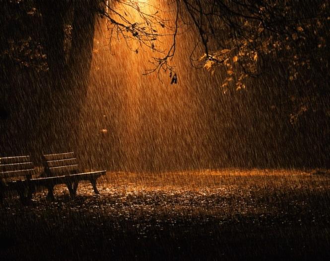 Красивая фотосессия на тему осенний дождь 11