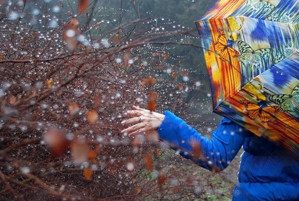 Красивая фотосессия на тему осенний дождь 16