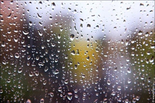 Красивая фотосессия на тему осенний дождь 20