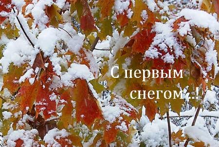 Красивые картинки с первым снегом 09