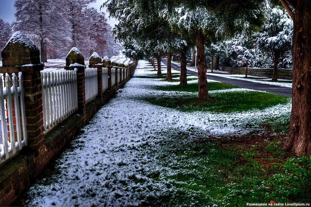Красивые картинки с первым снегом 11