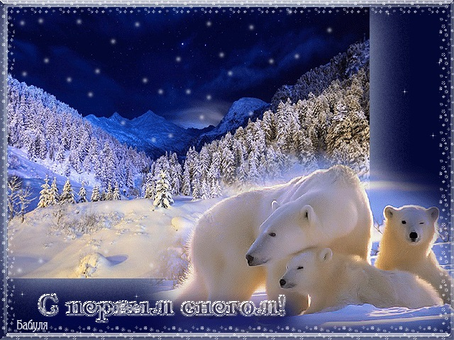 Красивые картинки с первым снегом 17