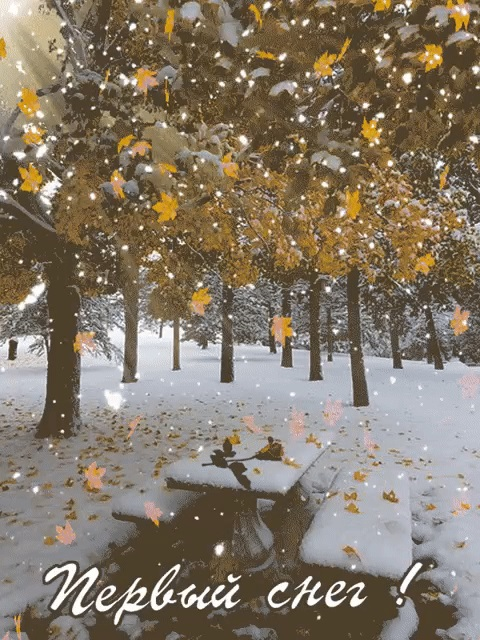 Красивые картинки с первым снегом 20