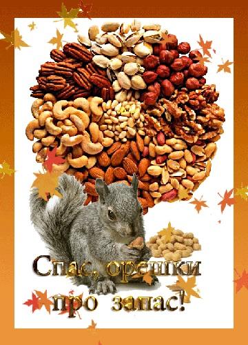 Красивые открытки Третий Ореховый Спас 15