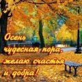 Красивые открытки про осень   скачать 29