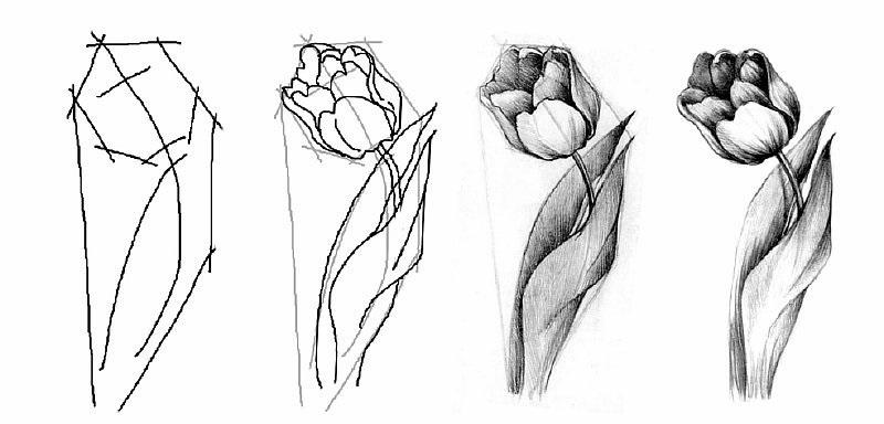 Красивые рисунки на день материя для срисовки 15