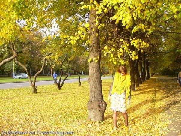 Крутые идеи фотосессии в осеннем лесу 02