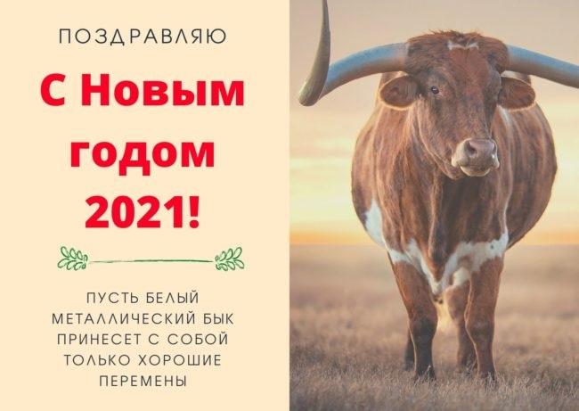 Крутые открытки на год быка 2021 02