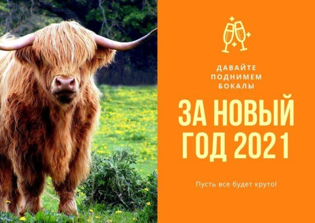 Крутые открытки на год быка 2021 04