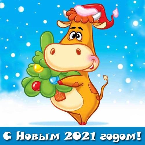 Крутые открытки на год быка 2021 07