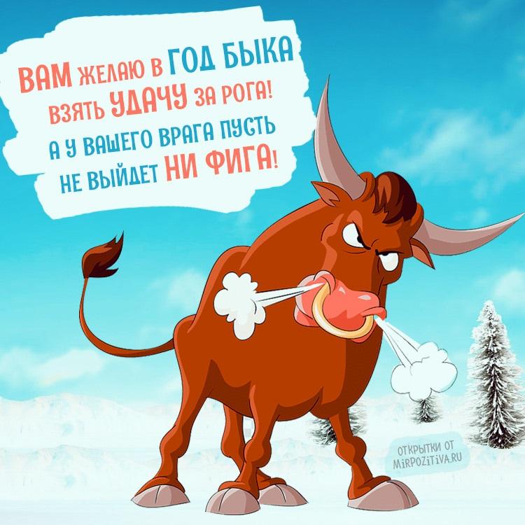 Крутые открытки на год быка 2021 09