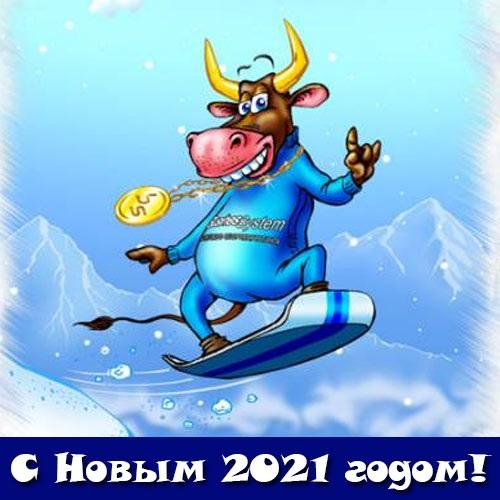 Крутые открытки на год быка 2021 15