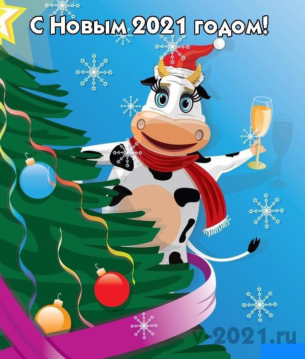 Крутые открытки на год быка 2021 20