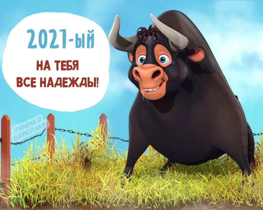 Крутые открытки на год быка 2021 23