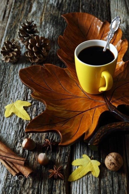 Милые фото девушки осенью с кофе 06