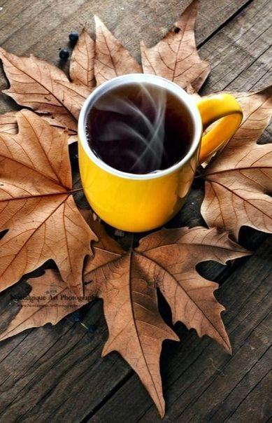 Милые фото девушки осенью с кофе 21