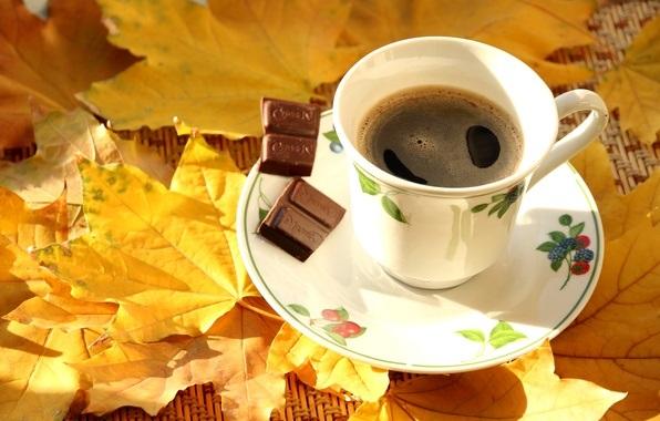 Милые фото девушки осенью с кофе 22