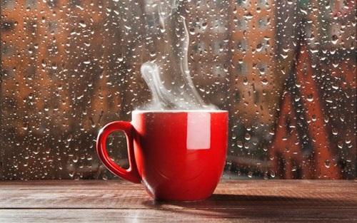 Милые фото девушки осенью с кофе 25