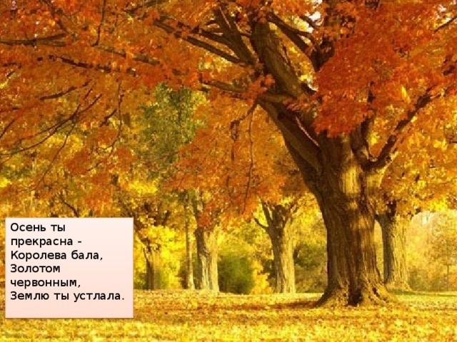 Осень ты прекрасна картинки поделки 06