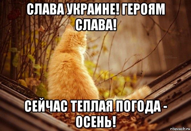 Очень смешные мемы про осень 04