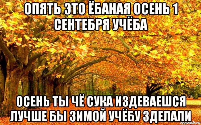 Очень смешные мемы про осень 08