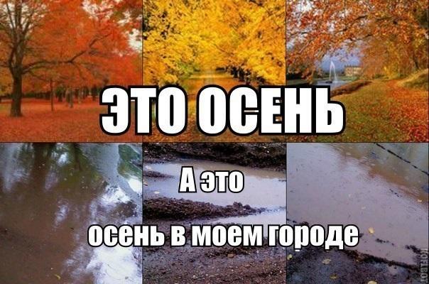 Очень смешные мемы про осень 12