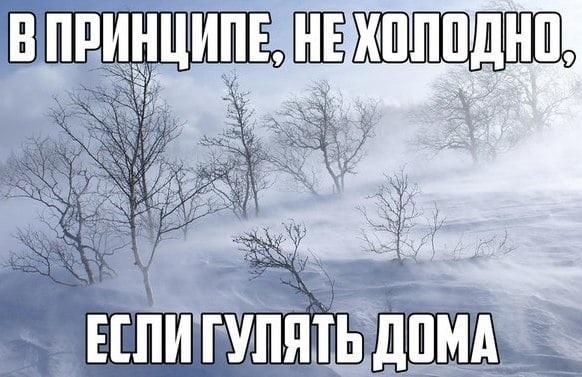 Очень смешные мемы про первый снег 09