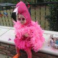 Прикольные детские костюмы на хэлоуин 26