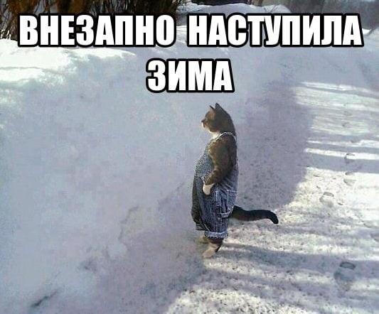 Прикольные картинки про зиму с надписями 23
