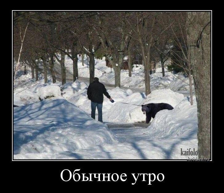 Прикольные картинки про зиму с надписями 29