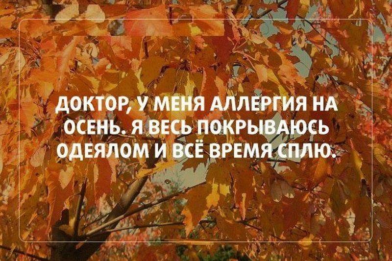 Прикольные картинки про осень с надписями 06