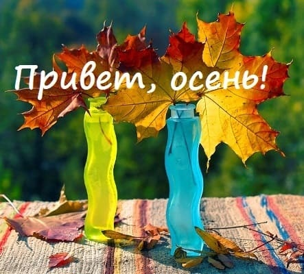 Прикольные картинки про осень с надписями 07